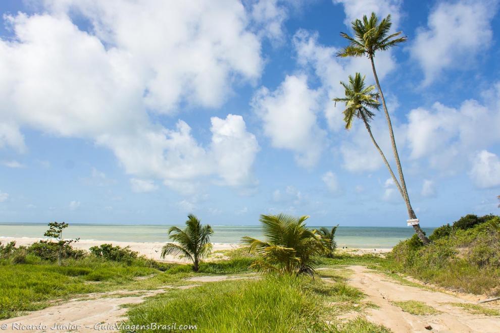 Foto orla Praia Japara Mirim, Cumuruxatiba, BA.