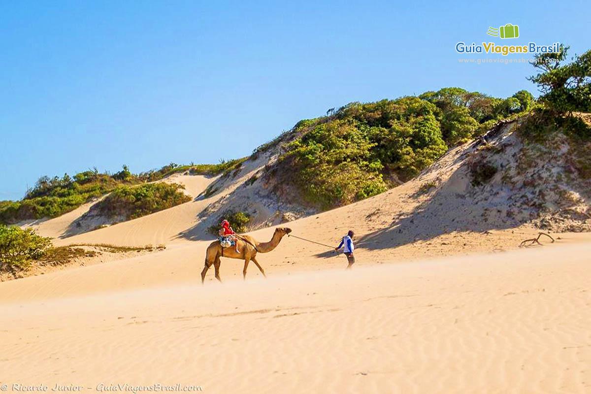Foto dunas de Genipabu com dromedários em Natal, RN.