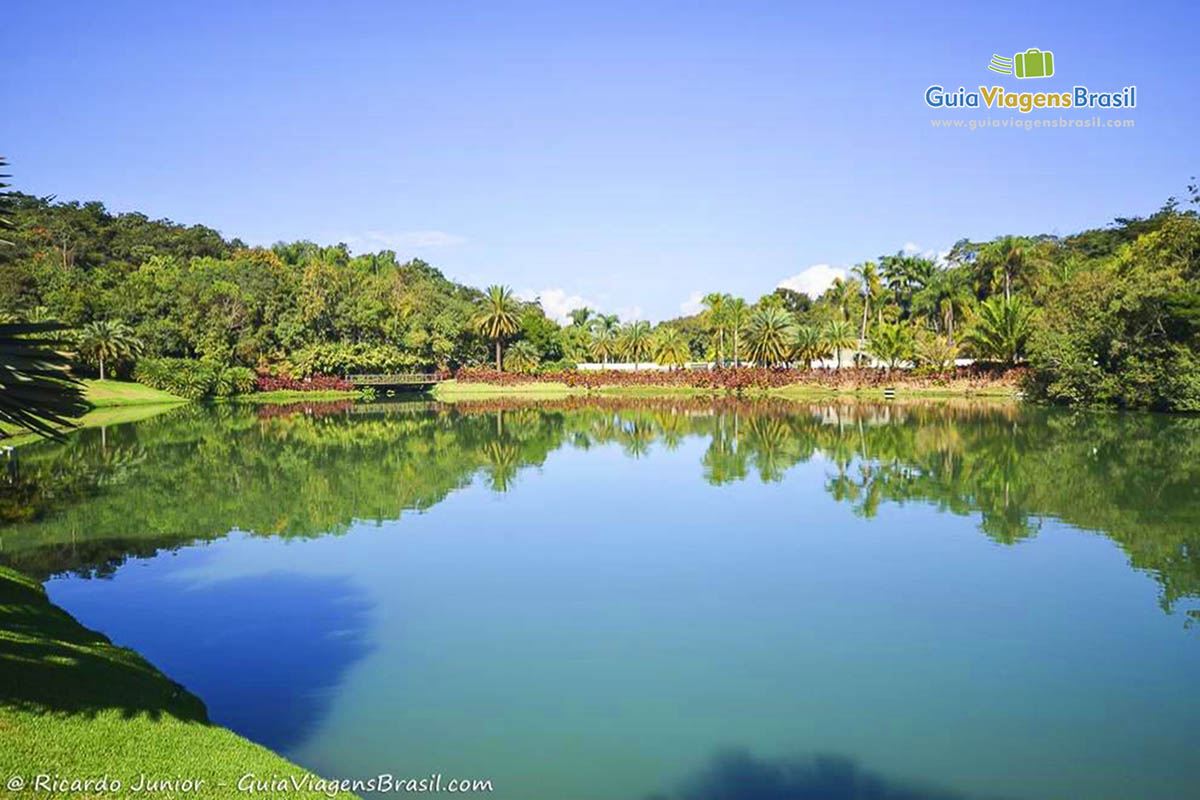 Imagem de lindo lago do Instituto Inhotim.