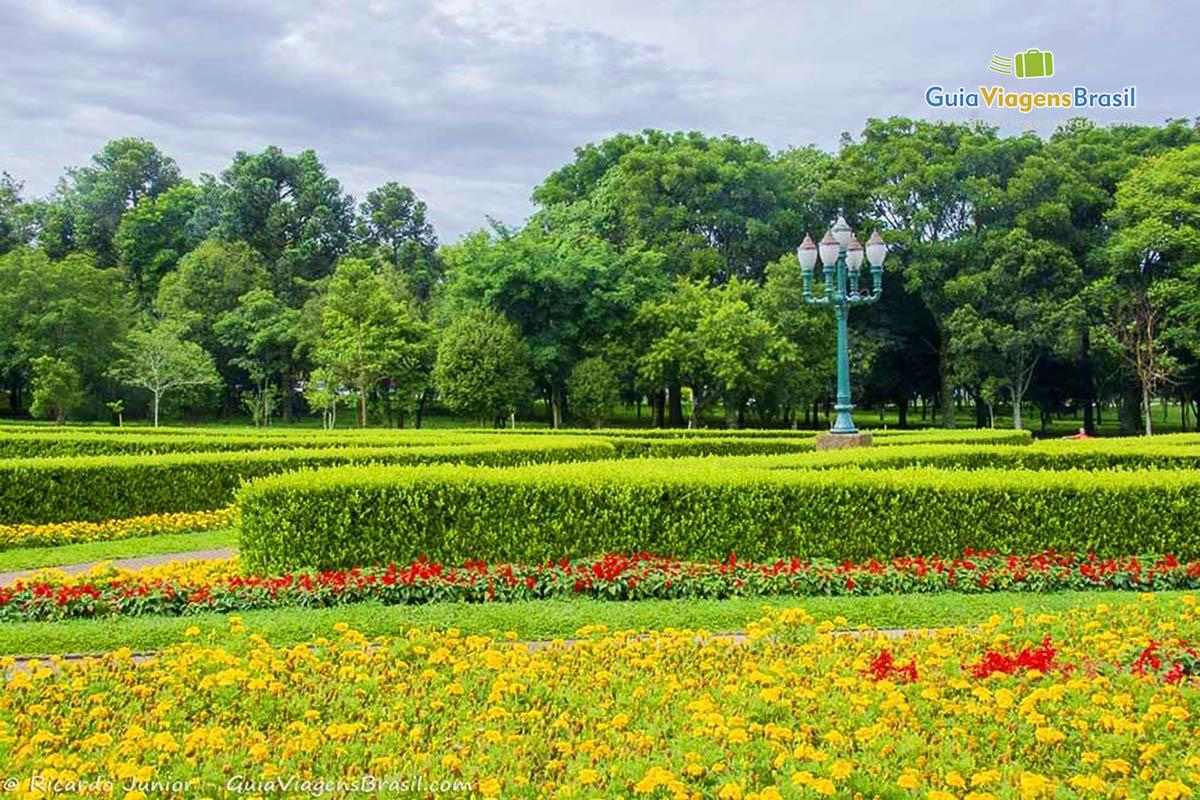 flores jardim botanico curitiba:aprecie as fotos do lindo jardim botânico de curitiba o jardim