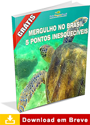 Ebook sobre Pontos de Mergulhos no Brasil
