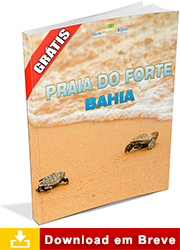 Ebook sobre a Praia do Forte